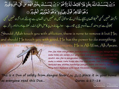 Dua of Safety From Dengue Fever in Light of Quran
