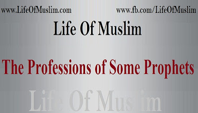 The Professions of Some Prophets